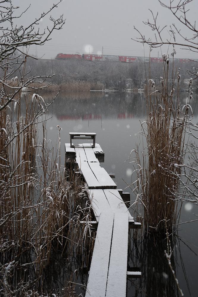 schneefall (68)