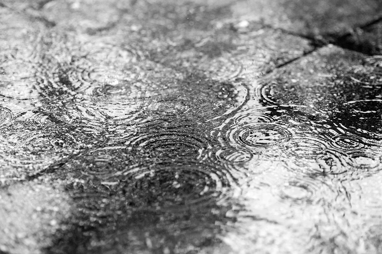 regen (49)
